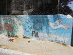 Israeli settlers in Hebron paint over pro-Palestine mural